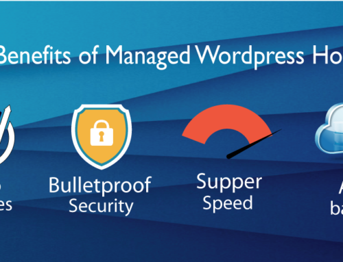 5 Types of WordPress (WP) Hosting Plans You Must Know About